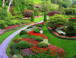 Commercial landscaping company lemont illinois