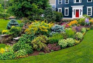 Think Outside The Box With Front Yard Landscaping Designs