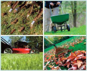 fall yard preparation