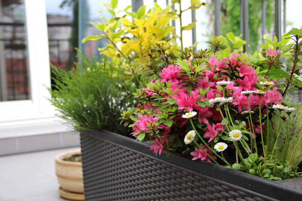Gardening Trends 2017 Home Design Wall