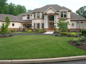 mistakes with landscape design