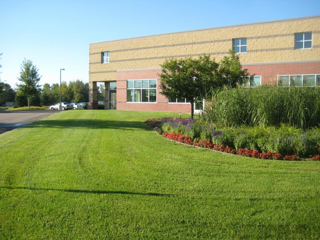 lawn care for commercial properties