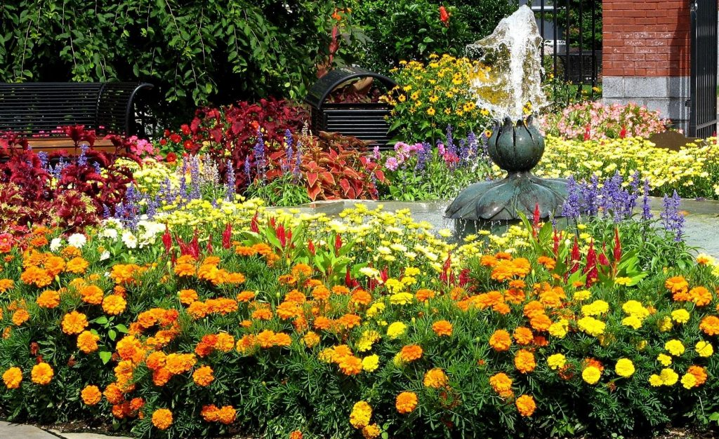 Quick Guide to Flower Beds