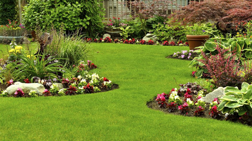 Step By Step Guide For Planning the Perfect Flower Bed