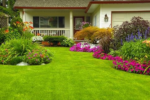 Understanding Plant Hardiness Zones